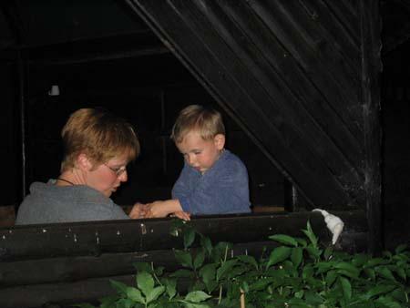 http://fordpflanzen.de/bilder/Andrea/2003_Nachtreffen_Lindscheid/021.jpg
