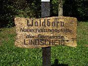 http://fordpflanzen.de/bilder/hermann/Nachtreffen03/RIMG1792.jpg
