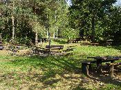 http://fordpflanzen.de/bilder/hermann/Nachtreffen03/RIMG1795.jpg