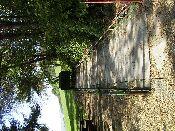 http://fordpflanzen.de/bilder/hermann/Nachtreffen03/RIMG1796.jpg