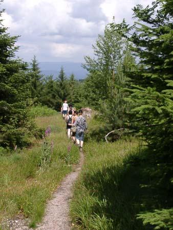 http://fordpflanzen.de/bilder/zottel/2003_FermeFranconi/06150392.jpg