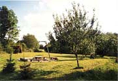 http://fordpflanzen.de/bilder/zottel/2003_FermeFranconi/Vorbereitung/04.jpg