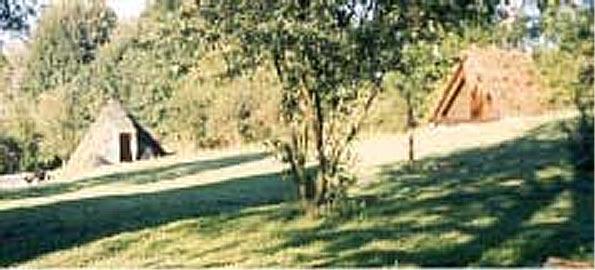 http://fordpflanzen.de/bilder/zottel/2003_FermeFranconi/Vorbereitung/05.jpg